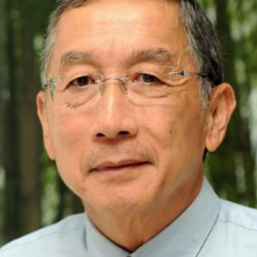Prof Tikki Pangestu
